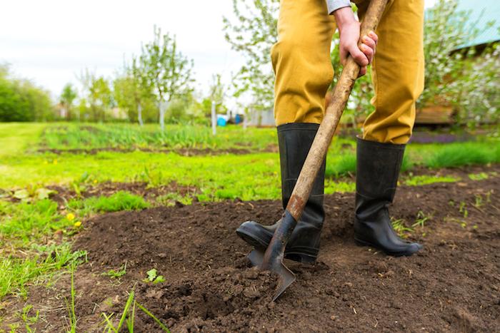 schwarze stiefel, ein mann mit einer hacke aus holz, ein garten mit grünen pflanzen und bäumen mit grünen blättern, garten gestalten