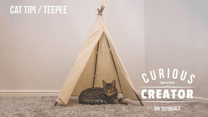 ein grauer teppich und eine graue katze, ein kleines mini zelt tippi mit langen stöcken aus holz, katzenzelt selber bauen, eine diy anleitung
