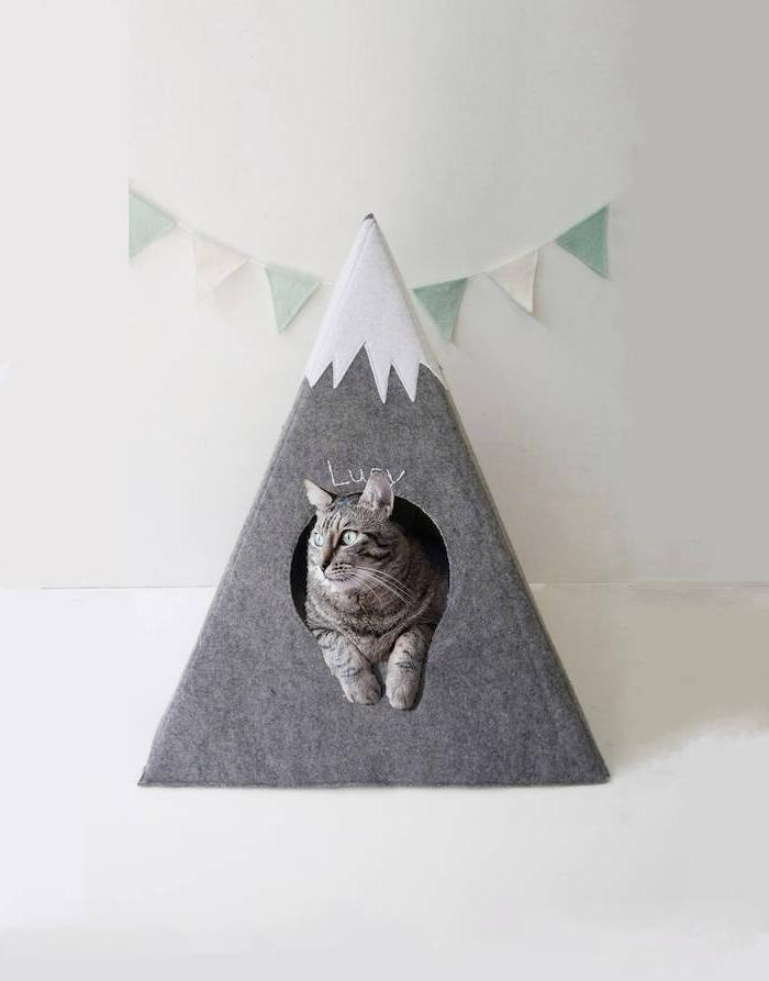 graue berge mit schnee, eine weiße wand und ein kleines graues diy katzenzelt tipi, eine graue katze mit grünen augen