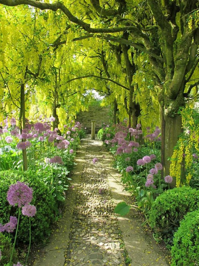 garten englischer stil, viele lila blumen am weg zum haus, blumen in hellgrüner farbe als bogen