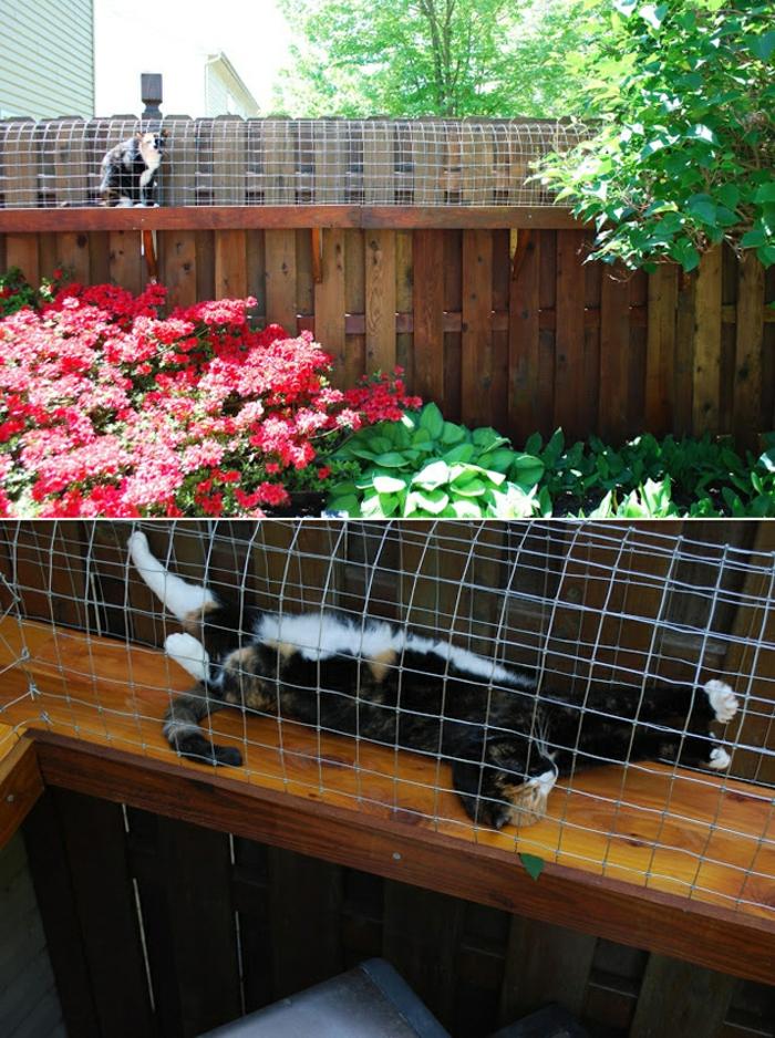 gartenanlagen beispiele, ein ort wo die katze gerne schläft, blumen darunter