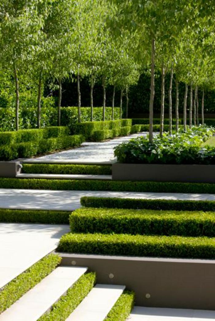 grüne bäume im garten, sommerbild, frische und grüne farbe im garten, englischen garten anlegen