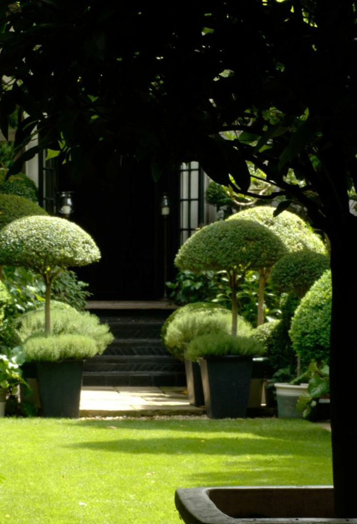 gestaltung vom garten englisch, kleine dekorative büschen wie kleine bäume, natürliche deko im garten
