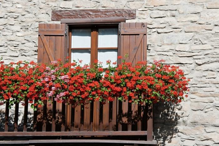 lösungen für kleine balkone, schöne rote blumen an dem balkon, hängende blumen deko