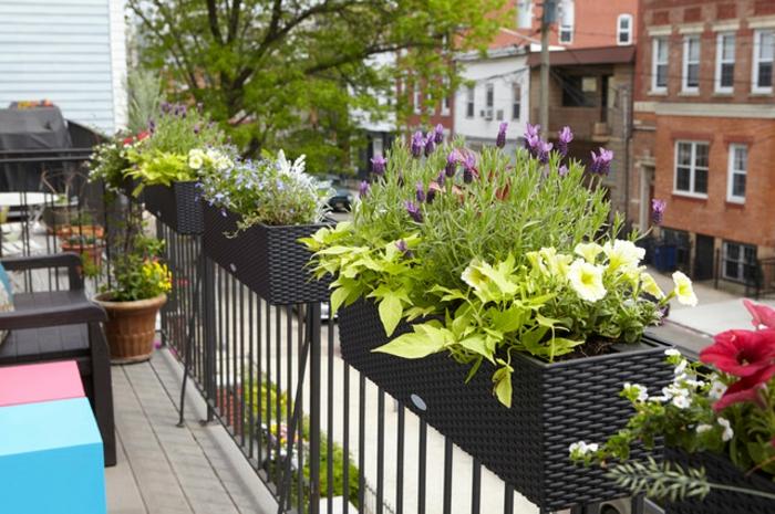 lösungen für kleine balkone, ideen mit blumen zum dekorieren, blumen an dem zaun leden, bunte farben