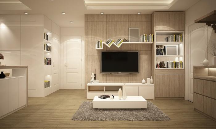 weiße Regale, Fernseher, grauer Teppich