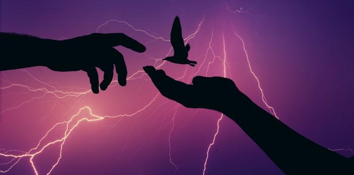 Blitze und Hände, Stromanbieterwechsel
