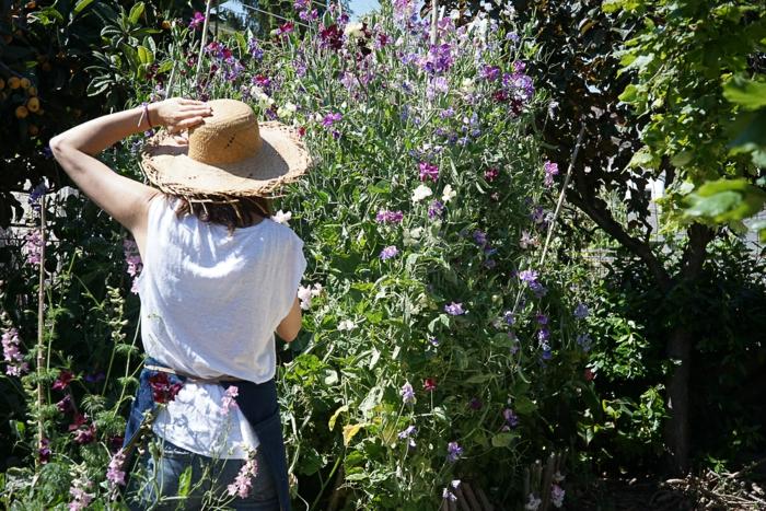 eine frau pflückt blumen im garten, um ikebana gestecke zu machen, frau mit hut, gartenblumen
