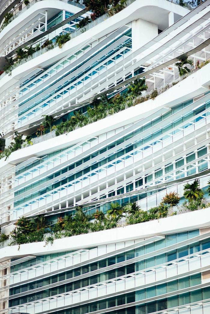 Pflanzen als Sichtschutz auf dem Balkon, individuell angefertigte Gläser und Platten