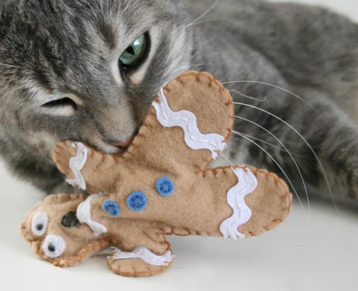 diy katzenspielzeug aus stoff, graue katze mit grünen augen, das ingwermännchen