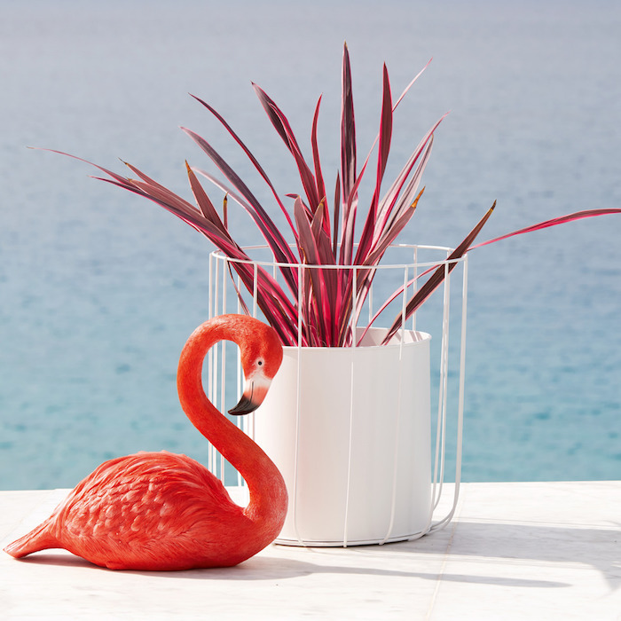 meer und ein weißer blumentopf mit einer roten pflanze und eine dekorative rote flamingo mit roten federn