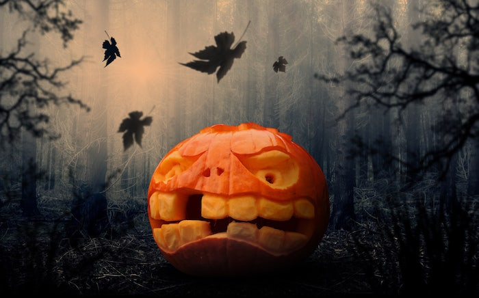 ein wald mit vielen schwarzen bäumen mit großen und kleinen schwarzen blättern und ein oranger halloween kürbis mit zwei gelben großen augen und mit gelben großen zähnen, gruselige kürbisgesichter schnitzen, einen orangen halloween kürbis schnitzen
