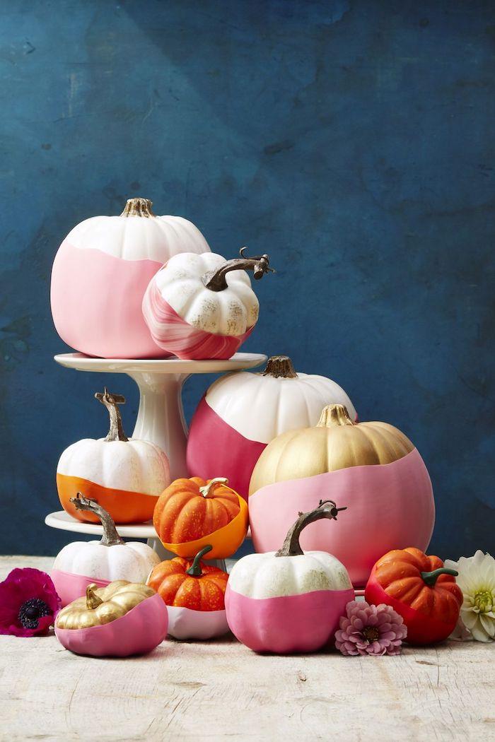 viele kleine und große pinke, orange, goldene und violette deko halloween kürbisse, eine blaue wand und kleine violette blumen