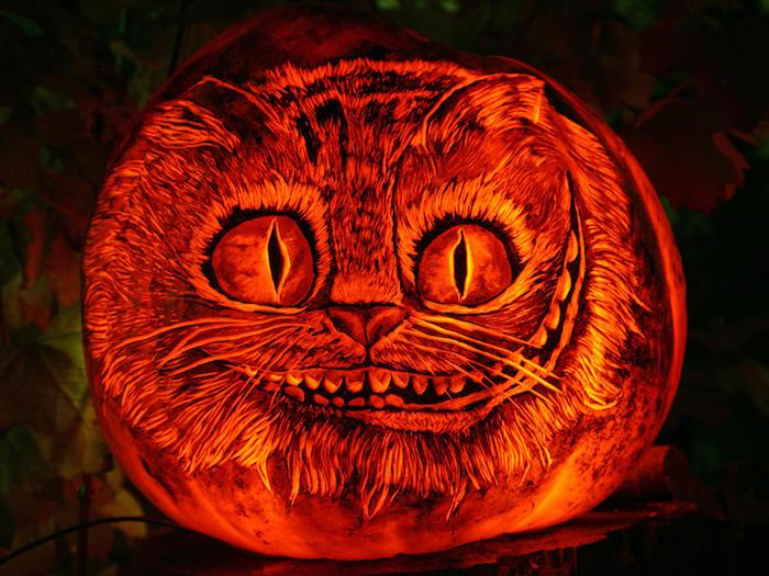 eine große orange katze mit orangen großen augen, eine katze basteln aus einem orangen kürbis, halloween lustige kürbisgesichter malen