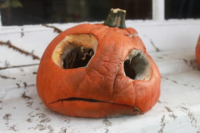 kürbis gesicht, ein kleiner oranger halloween kürbis mit großen schwarzen augen, halloween deko selber basteln