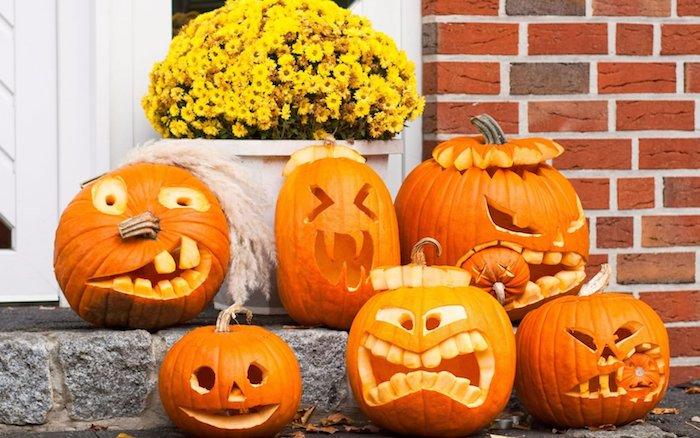 ein blumentopf mit vielen kleinen gelben blumen, treppe mit kleinen orangen halloween kürbissen mit lustigen kürbisgesichtern mit gelben augen und zähnen