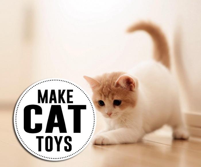 katzenspielzeug basteln, kätzchen die spielt, boden aus holz, kleines haustier