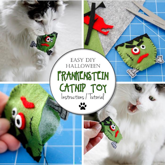 katzenspielzeug diy, weiße katze, spilzeug zombi aus stoff, kreative bastelideen, haustier