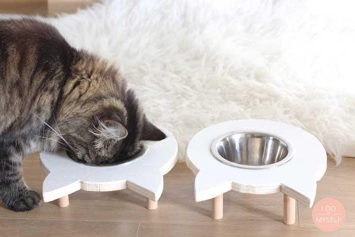 langhaar katze, katzenspielzeug selber basteln, selbstgemachter katzenschüssel aus holz