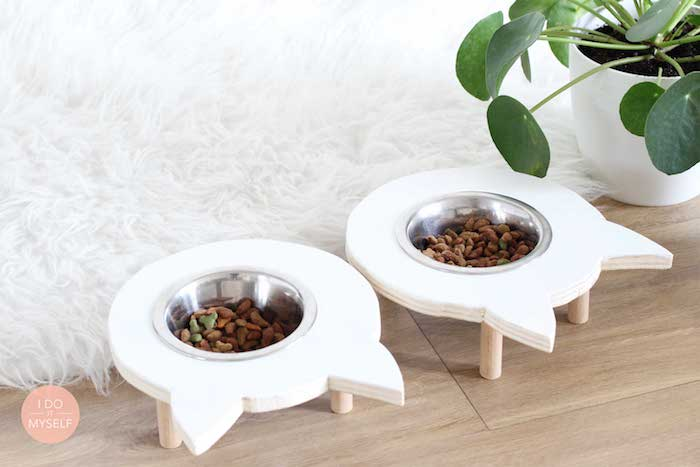 katzenfutter, katzenspielzeug selber basteln, weißer flauschiger teppich, selbstgemachte katzenschüssel
