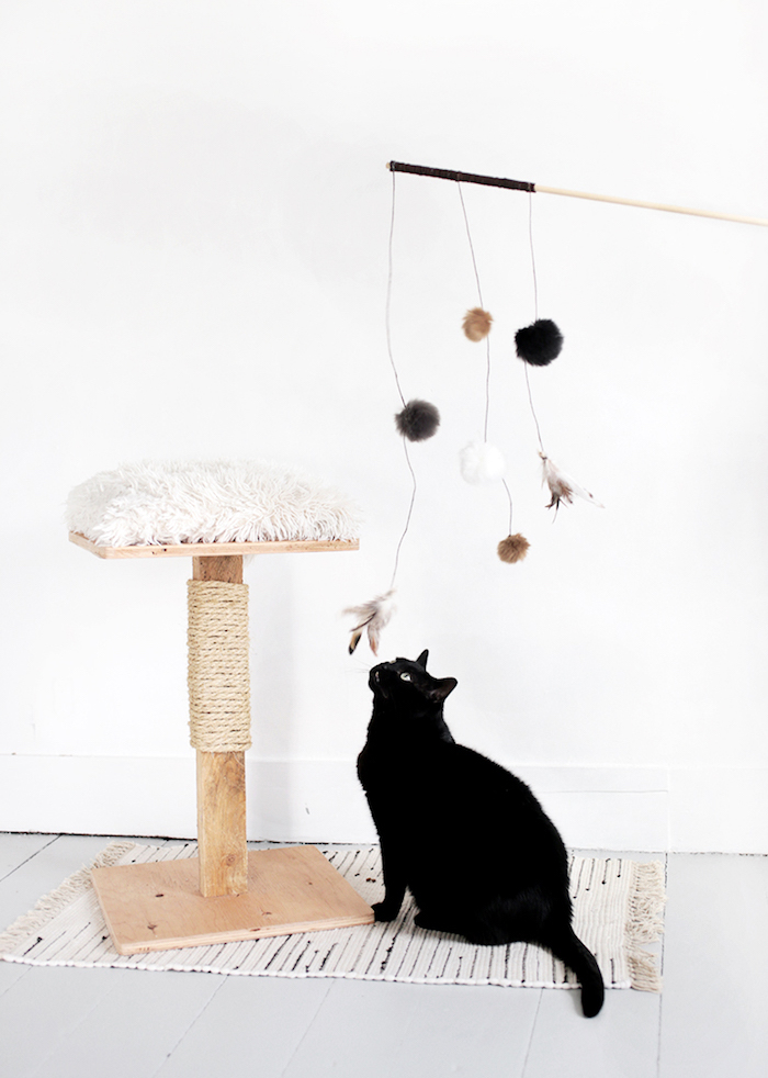 katzenspielzeug selber basteln, schwarze katze, katzenbaum mit seil für kratzen, haustier