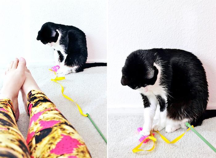 katzenspielzeug selber bauen, füße, schwarz weiße katze, selbstgemachtes spielzeug, angel