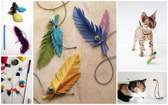 katzenspielzeug selber bauen, kleines kätzchen, angel spielzeuge, feder aus stoff