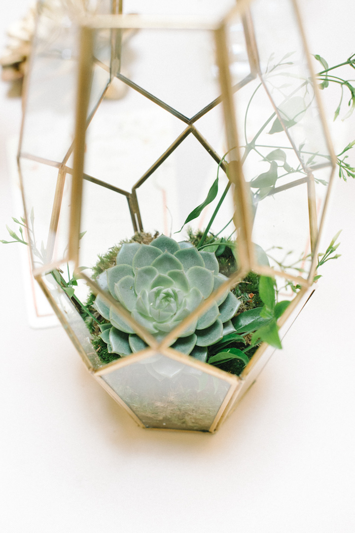 Echte Pflanzen in Glasgefäß, kreative und ausgefallene Deko Idee für Hochzeit