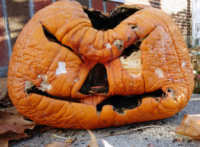 viele kleine braune blätter und ein großer oranger halloween kürbis mit zwei schwarzen augen und einer schwarzen nase, lustige kürbisgesichter