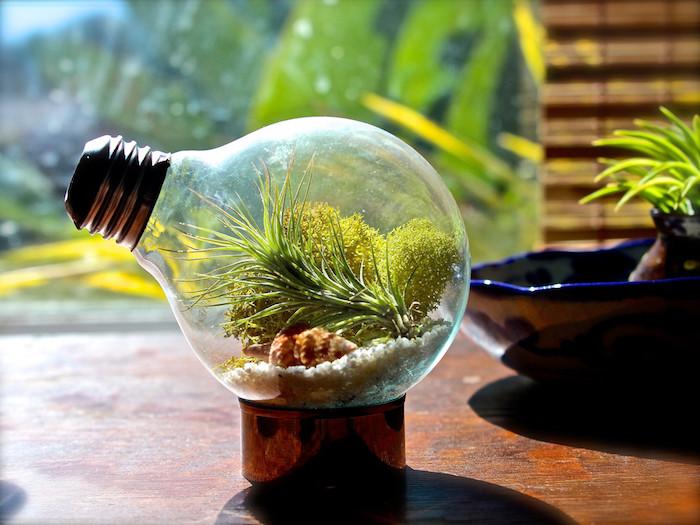 deko mkt glühbirnen, eine alte kleine glühbirne mit grünen algen und pflanzen und kleinen weißen steinen und ein brauner tisch aus holz