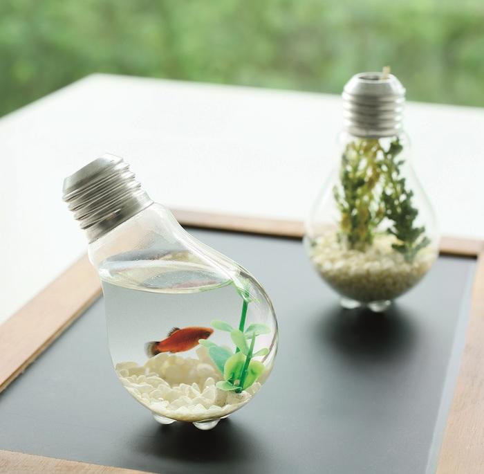 zwei kleine glühbirne als aquarium mit wasser, einem kleinen orangen fisch und mit grünen algen und weißen steinen, recycling basteln ideen