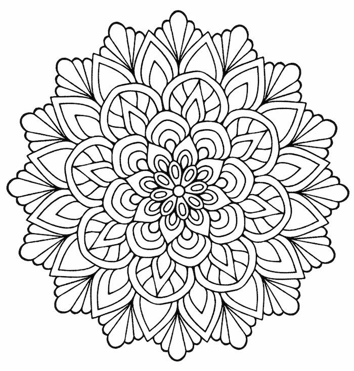 ausmalbilder zum ausdrucken, symmetrische details, große blume, template