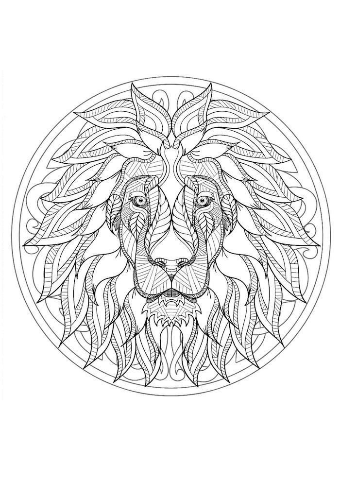 ausmalbilder zum ausdrucken, löwenkopf mit vielen kleinen details, kreis