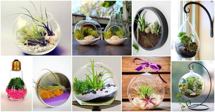 deko frühling, florrarium basteln, runde vasen, kleine grüne pflanzen, moos, rosa stienchen