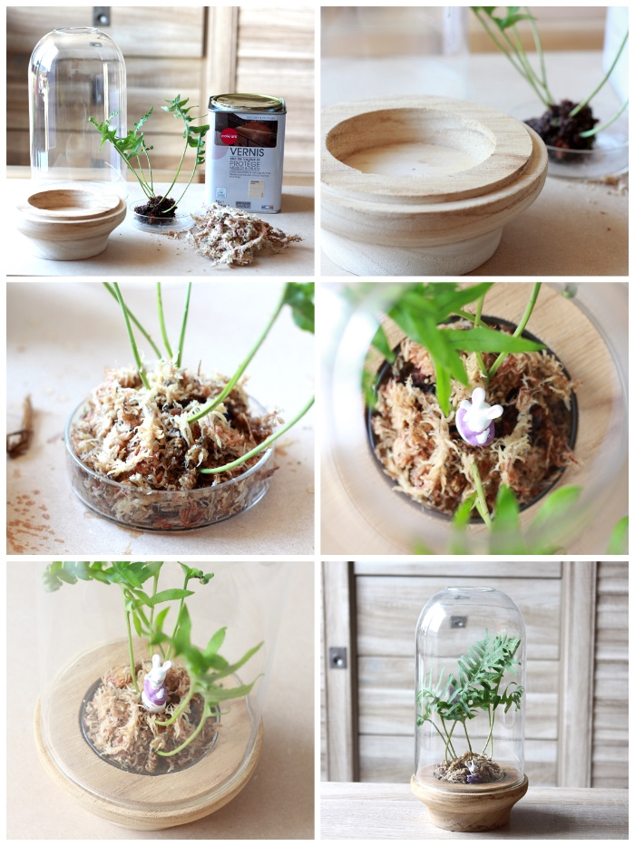 diy gartendeko, florrarium selber machen, grüne pflanze, diy bastelanleitung