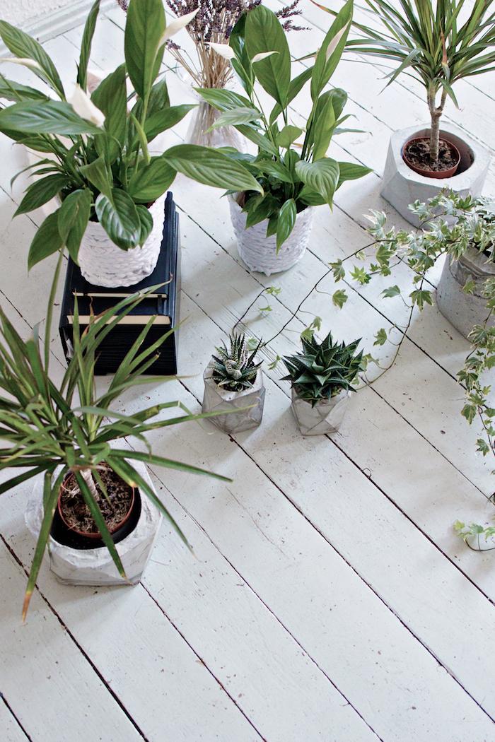 ein boden aus einem weißen holz und viele kleine und große blumentöpfe mit grünen pflanzen und mit vielen langen weißen streifen aus einem geschnittenen alten t-shirt, recycling basteln diy