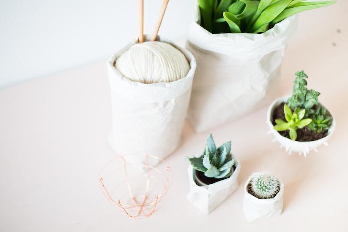 kleine und große blumentöpfe aus einer weißen alten papiertüte und mit grünen pflanzen mit grünen blättern und einem kleinen grünen kaktus, bastelideen für erwachsene
