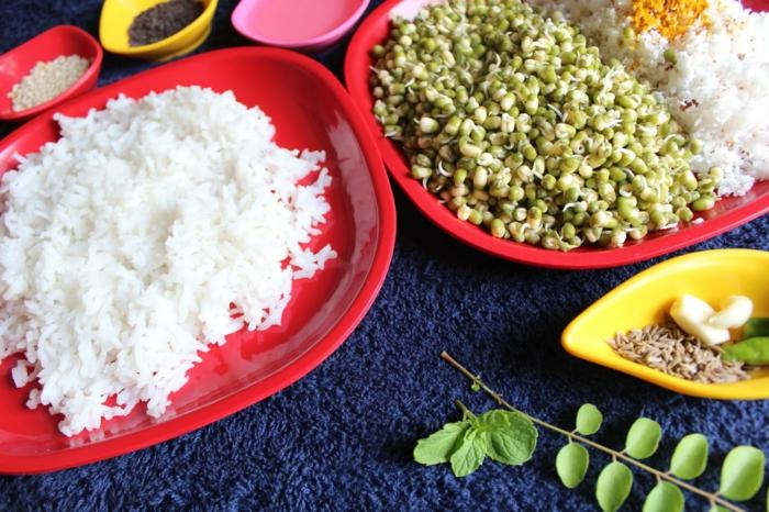 vegetarische rezepte selber kochen, rezepte, gesunde küche ohne fleisch und fisch, vegan kochen