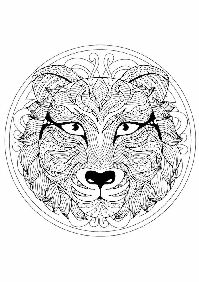 mandala ausdrucken, tigerkopf im kreis, viele schwarze linien, gratis schablone zum ausmalen