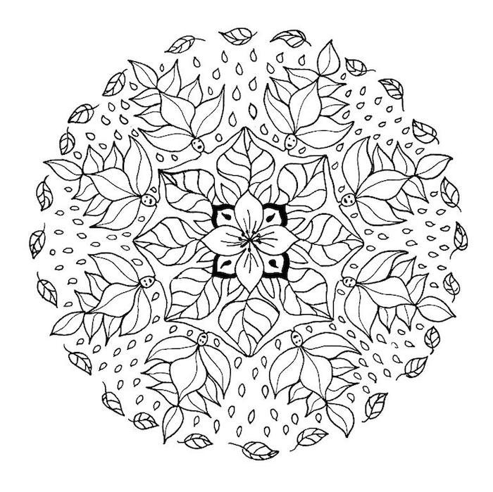 mandala vorlagen, blüte in der mitte, tropfen, fliegende blätter, blumenranken