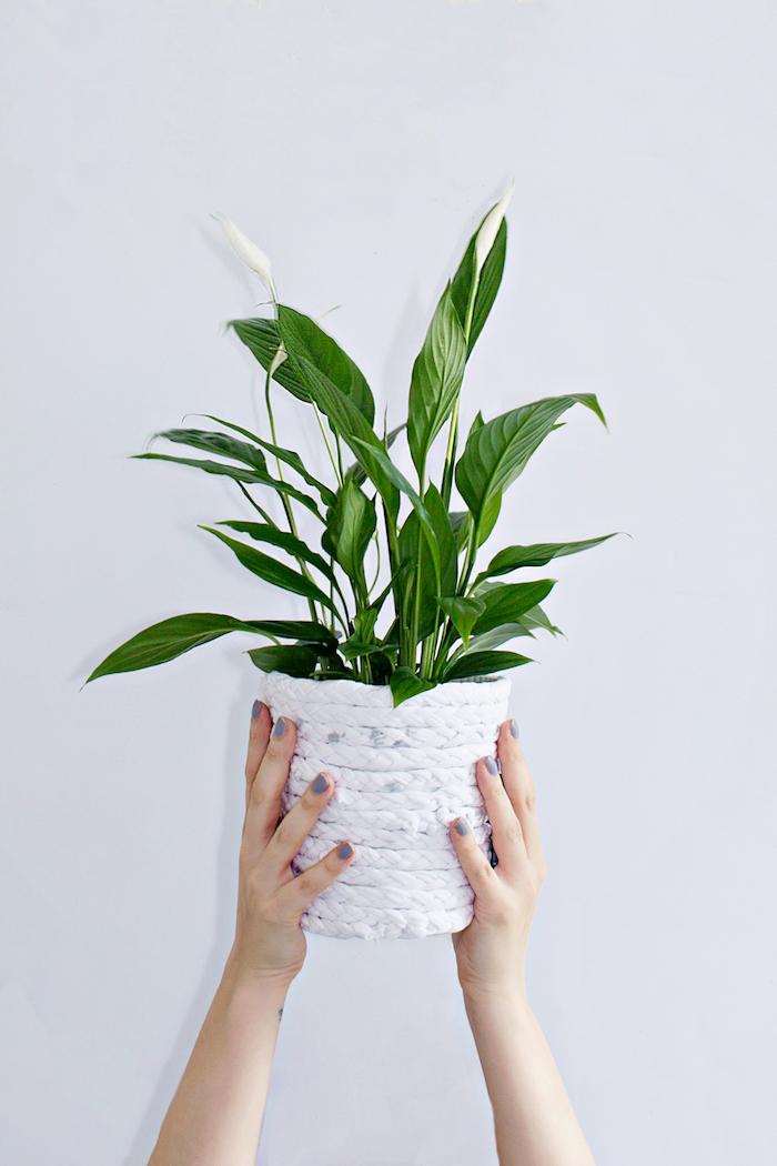 zwei hände mit einem violetten nagellack, eine weiße wand und weißer blumentopf mit blumen mit grünen pflanzen, lange weiße streifen aus einem alten weißen t-shirt