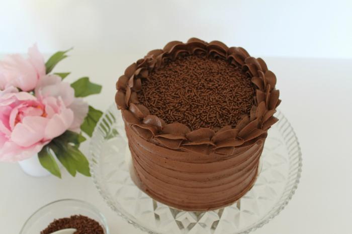 Schokoladenkuchen, schneller Kuchen mit Schokoladenglasur und Streusel in der Mitte