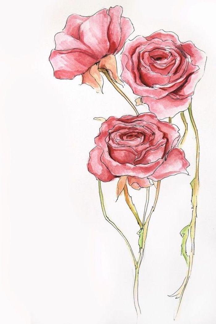 Blumen selber malen, drei rote Rosen zum Nachzeichnen, leichte Zeichnungen