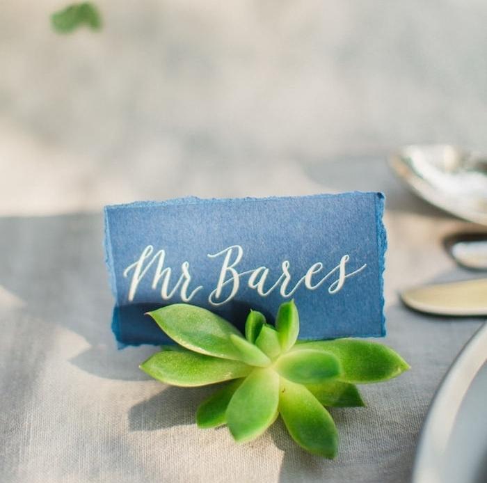 Leichte Idee für selbstgemachte Platzkarte mit echter Pflanze, Stück Stoff mit dem Namen des Gastes