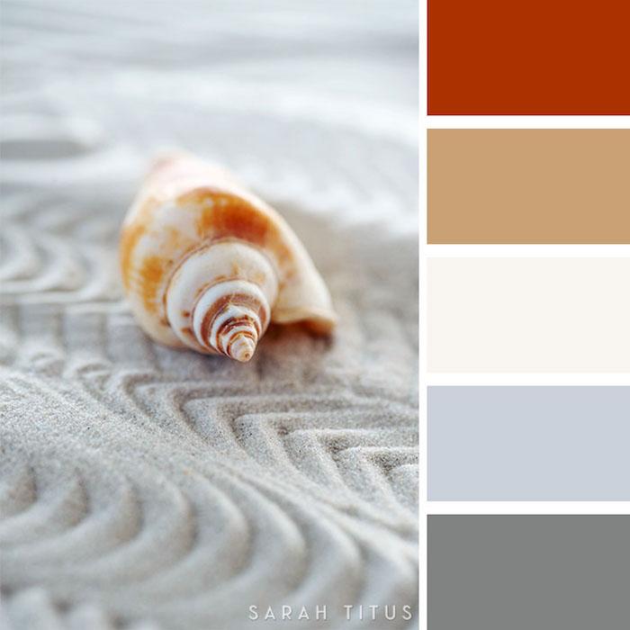 wandfarben ideen wohnzimmer, sand mit muschel, maritime farbpalette erstellen, zusammenpassende töne