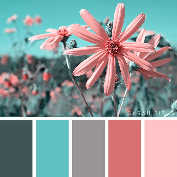 welche farben passen zusammen, rosa blumen, sommer farbpalette, einrichtungsideen