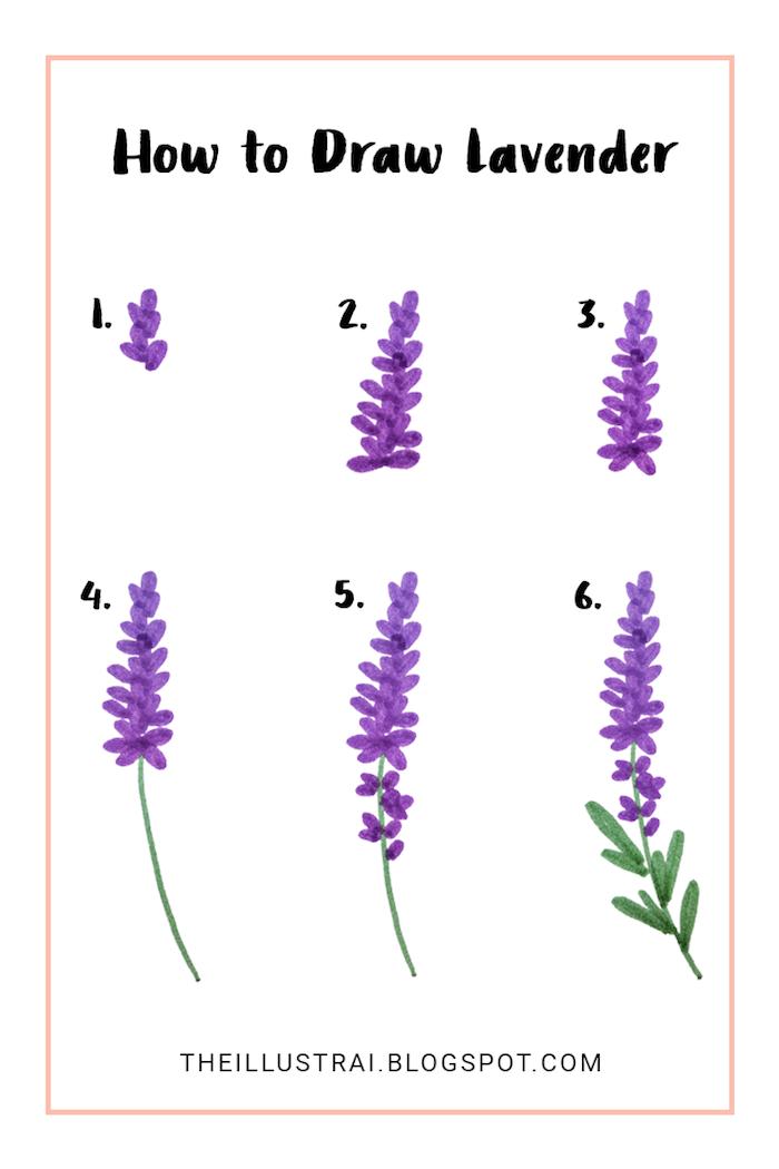 Lavendel zeichnen mit Filzstiften, Anleitung in sechs Schritten für Anfänger, leichte Zeichnungen