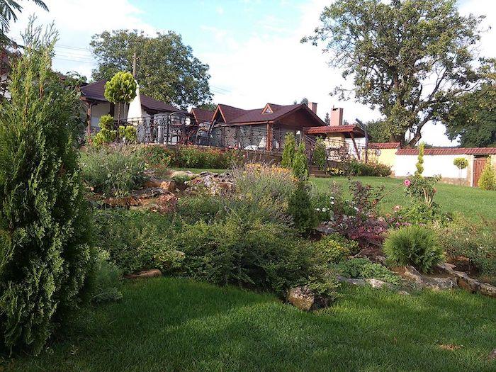 braunes haus mit kleinem steingarten mit einem grünen rasen und vielen steinen und grünen sukkulenten, gartengestaltung ideen