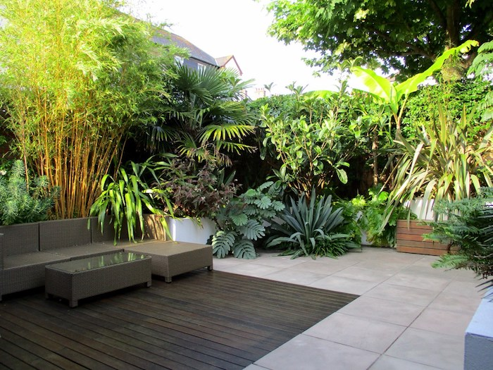 ein brauner boden aus holzin einem garten mit einem sichtschutz aus vielen grünen sichtschutz pflanzen mit grünen blättern, eine gartengestaltung idee diy, ein zaun aus pflanzen