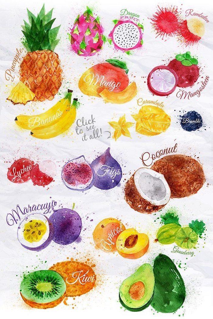 Schönes buntes Bild zum Nachmalen, viele verschieden Früchte, Zeichnen für Anfänger